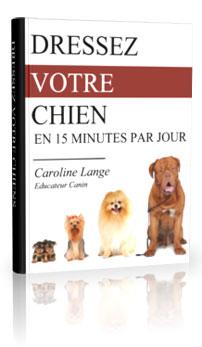 Comment dresser son chien en 15 minutes par jour ?